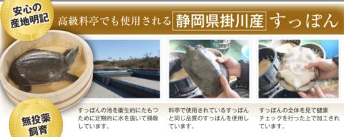 掛川産のすっぽん