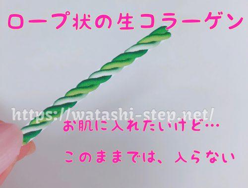 ロープ状の生コラーゲン