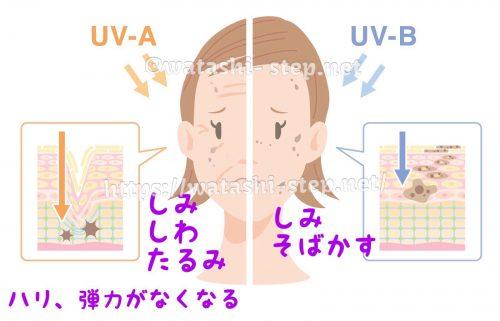 UVAとUVBが引き起こす、それぞれの肌トラブルの原因