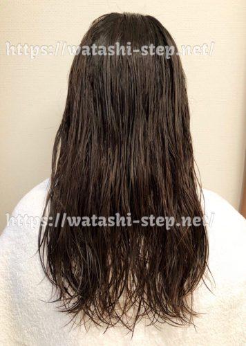洗って濡れた状態の私の髪
