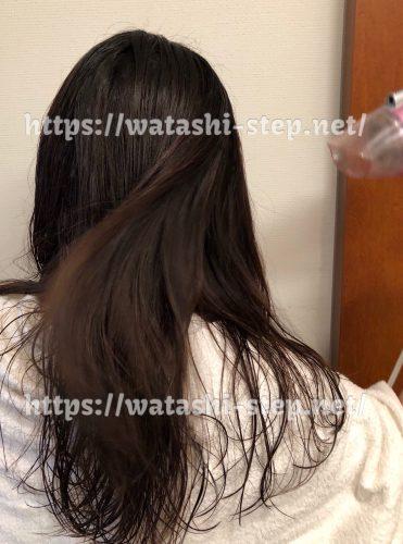普通のドライヤーで私の髪を乾かしている